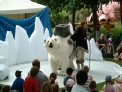 Giant furry animal show